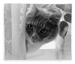 Wondering. Kitty Time Fleece Blanket