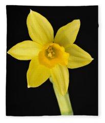 Yellow Daffodil Black Background Fleece Blanket