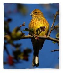 Yellowhammer Fleece Blanket
