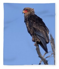 Bataleur Eagle Viewpoint Fleece Blanket
