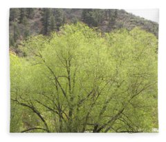 Tree Ute Pass Hwy 24 Cos Co Fleece Blanket