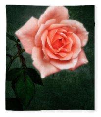 Hybrid Tea Rose Variety Congratulations Fleece Blanket