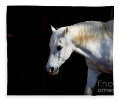 In Memory Of Mi Amigo Fleece Blanket