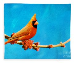 Male Northern Cardinal Perched On Tree Branch Fleece Blanket