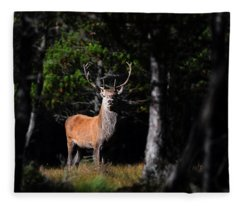 Stag In The Forest Fleece Blanket