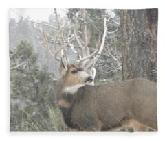 Buck Front Yard Divide Co Fleece Blanket