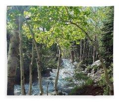 Along Alberta Falls Trail Rocky Mountain National Park Fleece Blanket