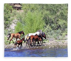 Arizona Wild Horses Fleece Blanket