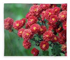 Beautiful Red Mums Fleece Blanket