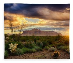 Beauty In The Desert Fleece Blanket