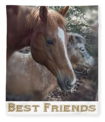 Best Friends Fleece Blanket