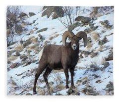 Bighorn7 Fleece Blanket