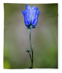 Blue Bell Fleece Blanket