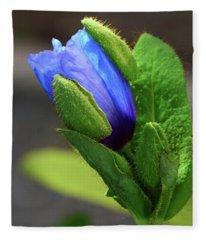 Blue Bud Fleece Blanket