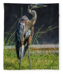 Blue Heron 1 Fleece Blanket