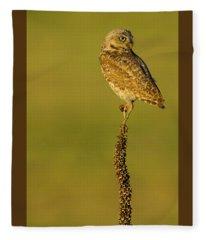 Burrowing Owl In Sunlight Fleece Blanket