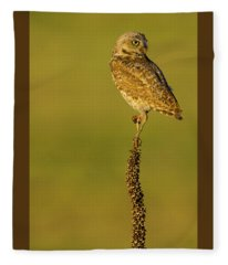 Burrowing Owl In Sunlight Fleece Blanket