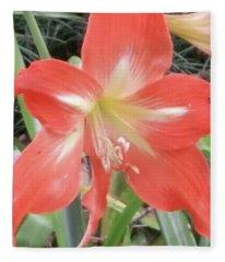 Burst Of Red Blooms Fleece Blanket