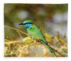 Colors Of Nature Fleece Blanket