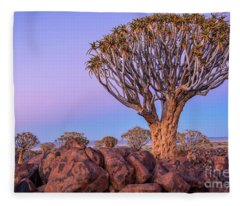 Dawn At The Quiver Trees Fleece Blanket
