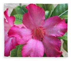 Desert Rose Fleece Blanket