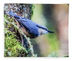 Eurasian Nuthatch Fleece Blanket