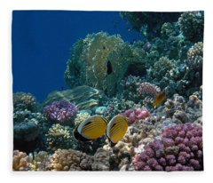 Exquisite Butterflyfish In The Red Sea Fleece Blanket