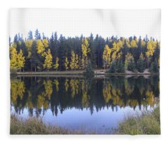 Potty Pond Reflection - Fall Colors Divide Co Fleece Blanket