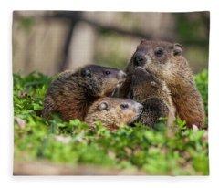 Happy Family Fleece Blanket