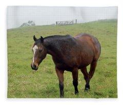 Horse In The Fog Fleece Blanket