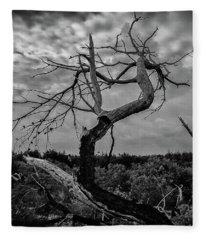 J.d. Tree 1 Fleece Blanket
