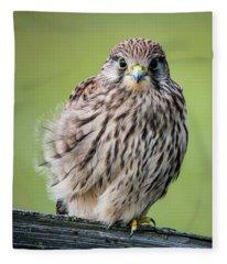 Juvenile Fleece Blanket