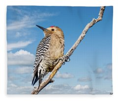 Male Gila Woodpecker Fleece Blanket