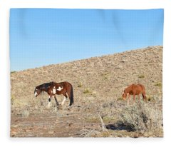 Mustangs Fleece Blanket