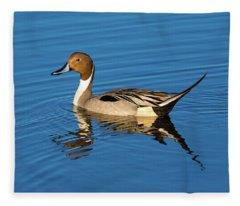 Northern Pintail Fleece Blanket