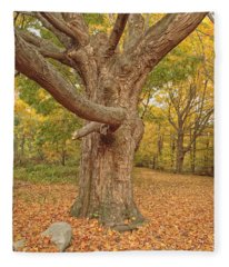 Odiorne Point State Park - Rye New Hampshire Fleece Blanket