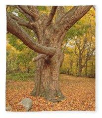 Odiorne Point State Park - Rye New Hampshire Fleece Blanket