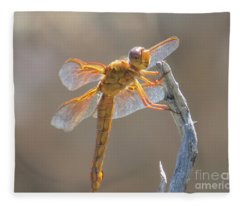 Dragonfly 5 Fleece Blanket