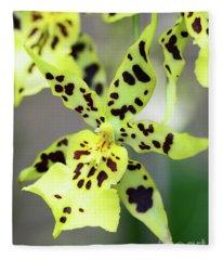 Orchid In Yellow Fleece Blanket