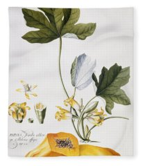 Papaya Fleece Blanket