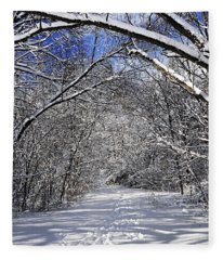 Path In Winter Forest Fleece Blanket