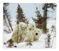 Polar Bear Ursus Maritimus Trio Fleece Blanket
