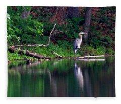 Posing Great Blue Heron  Fleece Blanket