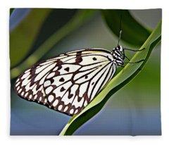 Rice Paper Butterfly 8 Fleece Blanket