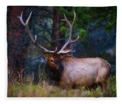 Rocky Mountain Elk Fleece Blanket