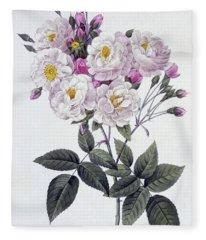 Rosa Noisettiana Fleece Blanket
