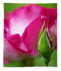 Budding Rose Fleece Blanket