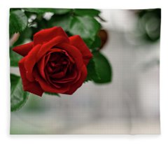 Roses In The City Park Fleece Blanket