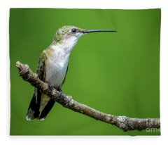 Ruby-throated Hummingbird Fleece Blanket