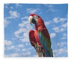 Scarlet Macaw Fleece Blanket